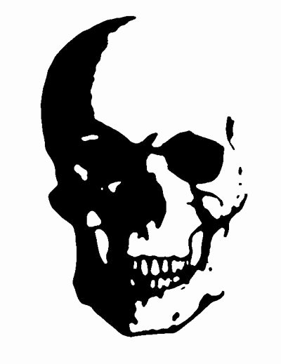 Spray Paint Stencil Designs New Best 20 Skull Stencil Ideas On Pinterest