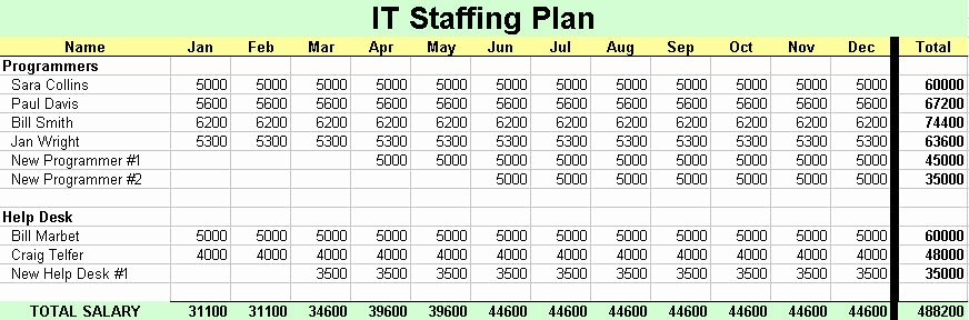 Staffing Plan Template Word Luxury It Staffing Plan
