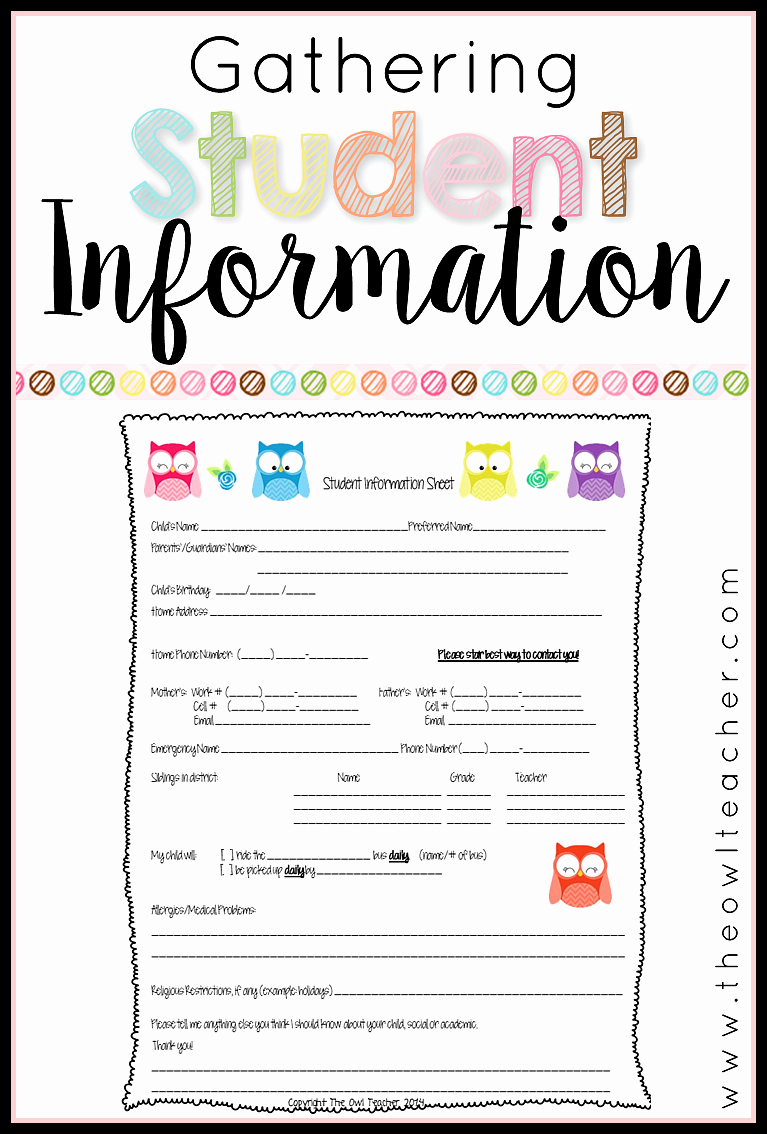 Student Information Sheet for Teachers Best Of Collecting Student Information the Owl Teacher