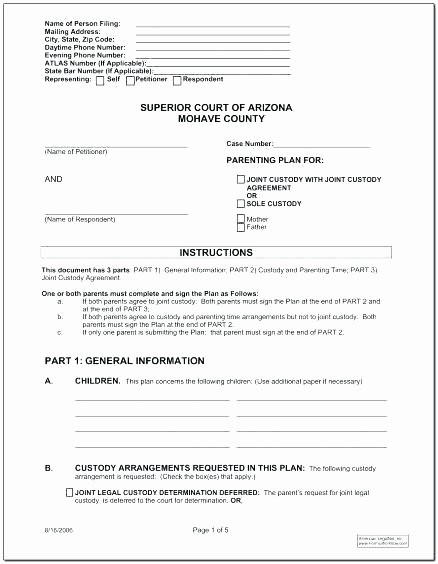 Supervised Visitation Report Template Awesome Joint Custody Template
