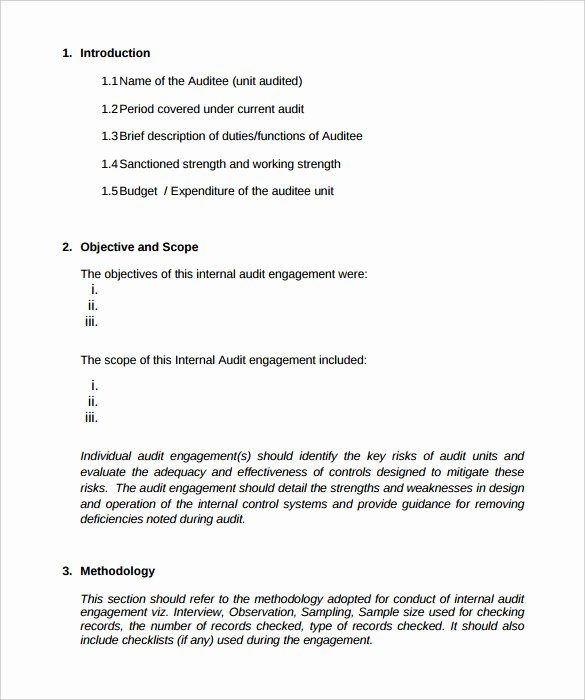 Supervised Visitation Report Template Inspirational Free Download Audit Report format Sample with Introduction