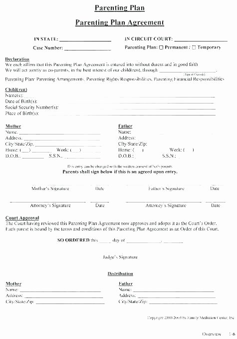 Supervised Visitation Report Template Inspirational Joint Custody Template