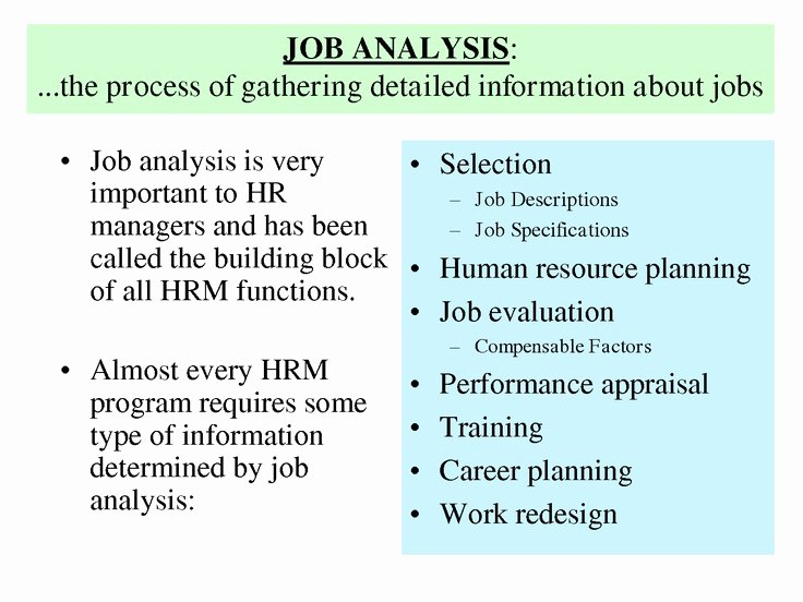 Swot Analysis for Hr Department Elegant History Job Analysis