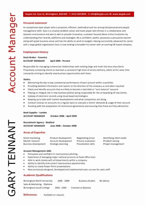 account manager description for resume