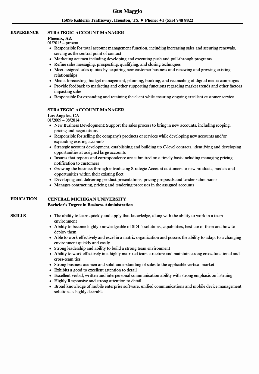 Technical Account Manager Resume Awesome Resume Examples Account Manager Resumeexamples