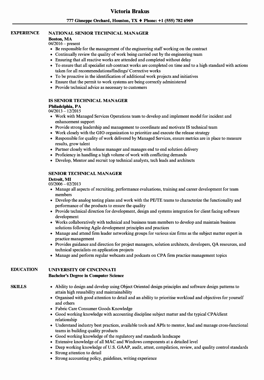 Technical Account Manager Resume Best Of Senior Technical Manager Resume Samples