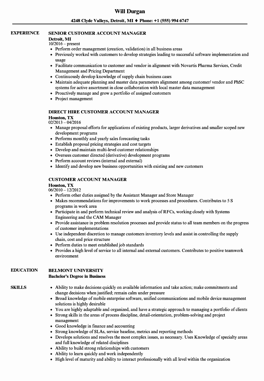 Technical Account Manager Resume New Customer Account Manager Resume Samples