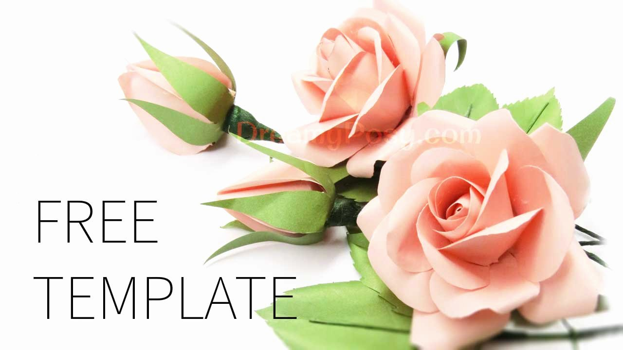 Template for Paper Flowers Beautiful Easy to Make Best Paper Rose with Free Template and Tutorial