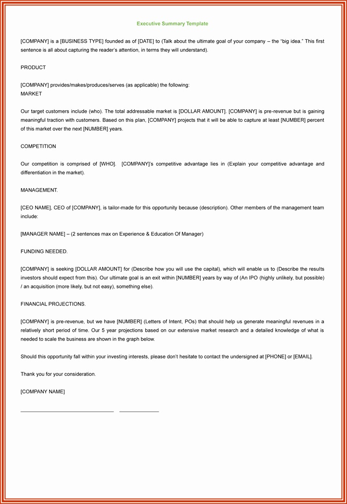 Template Of Executive Summary Beautiful 3 Executive Summary Examples for Word and Pdf