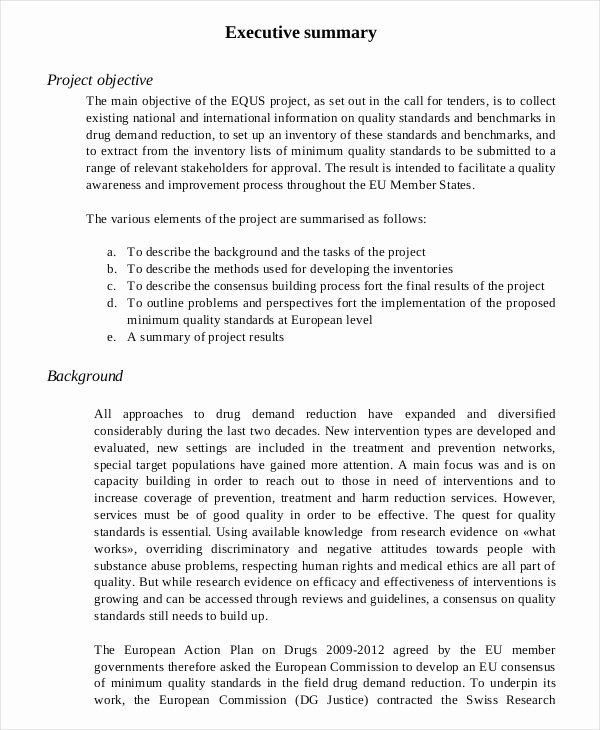 Template Of Executive Summary Elegant 20 Executive Summary Templates