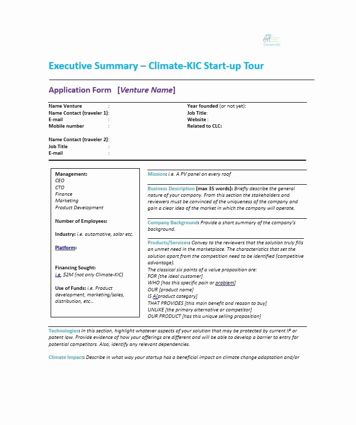 executive summary examples
