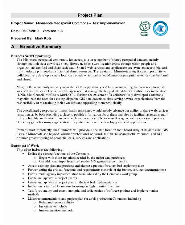 Template Of Executive Summary Fresh Executive Summary Template Example Samples How to