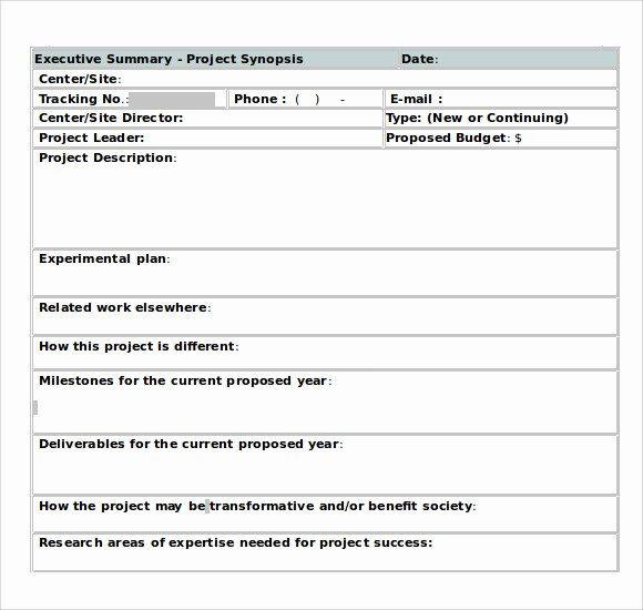 Template Of Executive Summary Luxury Sample Executive Summary Template 8 Documents In Pdf