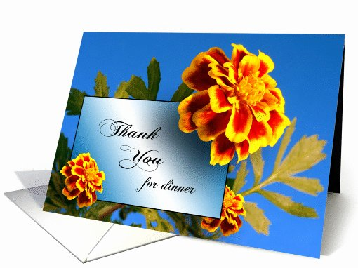 Thank You for Dinner Images Beautiful Thank You for Dinner Greeting Card orange Marigold Flowers