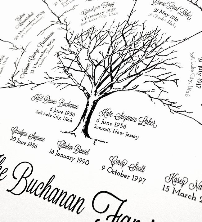 Three Generation Family Tree Awesome Personalized 3 Generation Ancestor Family Tree Fan Chart