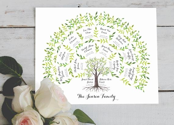 Three Generation Family Tree Best Of Geneology Family Tree Chart 3 Generations Watercolor