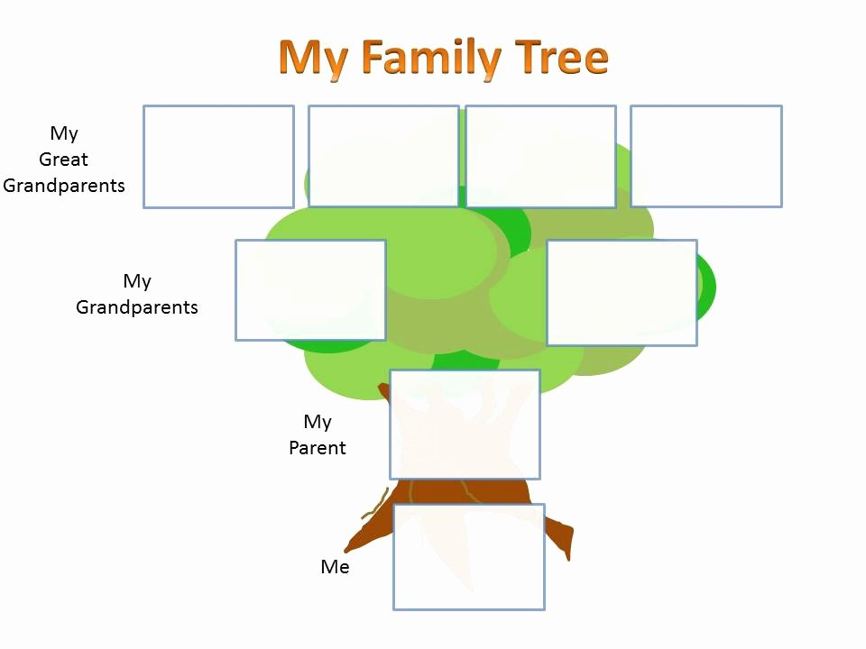 Three Generation Family Tree Fresh School Family History Project Template – Ancestry Talks