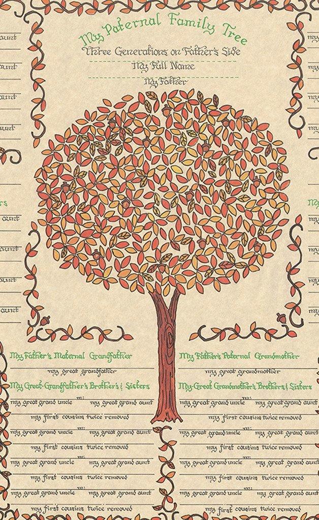 Three Generation Family Tree Inspirational 3 Generation Family Tree Chart Paternal Side