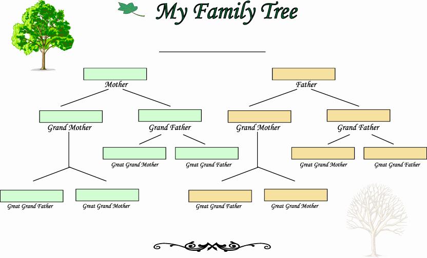 Three Generation Family Tree Luxury Blank Family Tree Template