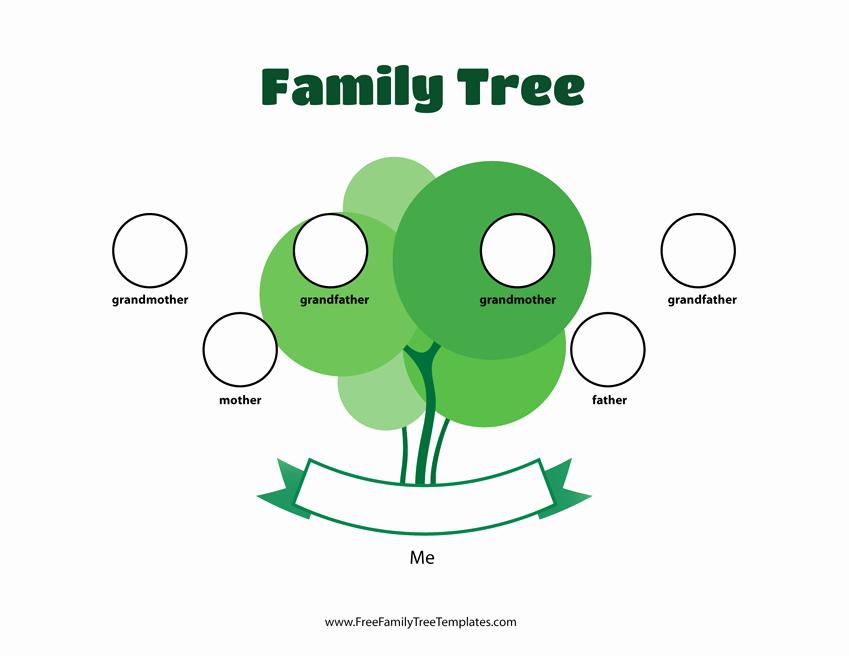 Three Generation Family Tree New 3 Generation Family Tree Template – Free Family Tree Templates