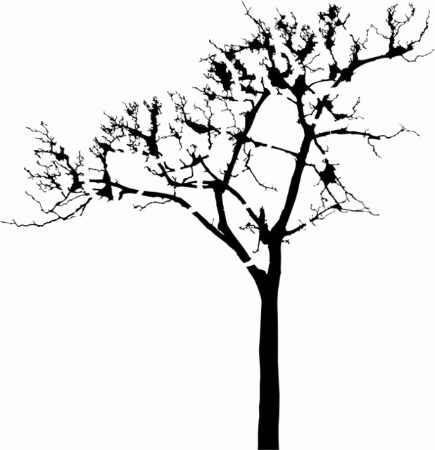 Tree Stencils for Walls Free Best Of Leafless Tree Stencil Traditional Wall Stencils by
