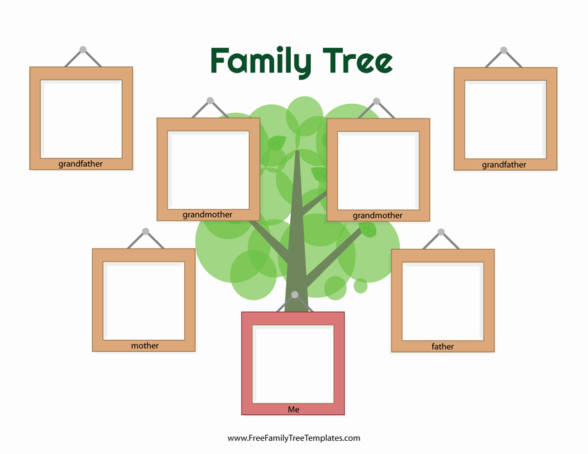 Tree Template for Family Tree Beautiful Picture Frame Family Tree Template – Free Family Tree