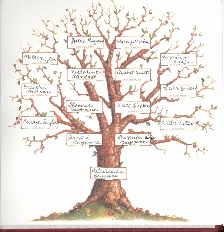 Tree Template for Family Tree Best Of Blank Family Tree 4 Generations Pat S Family Tree