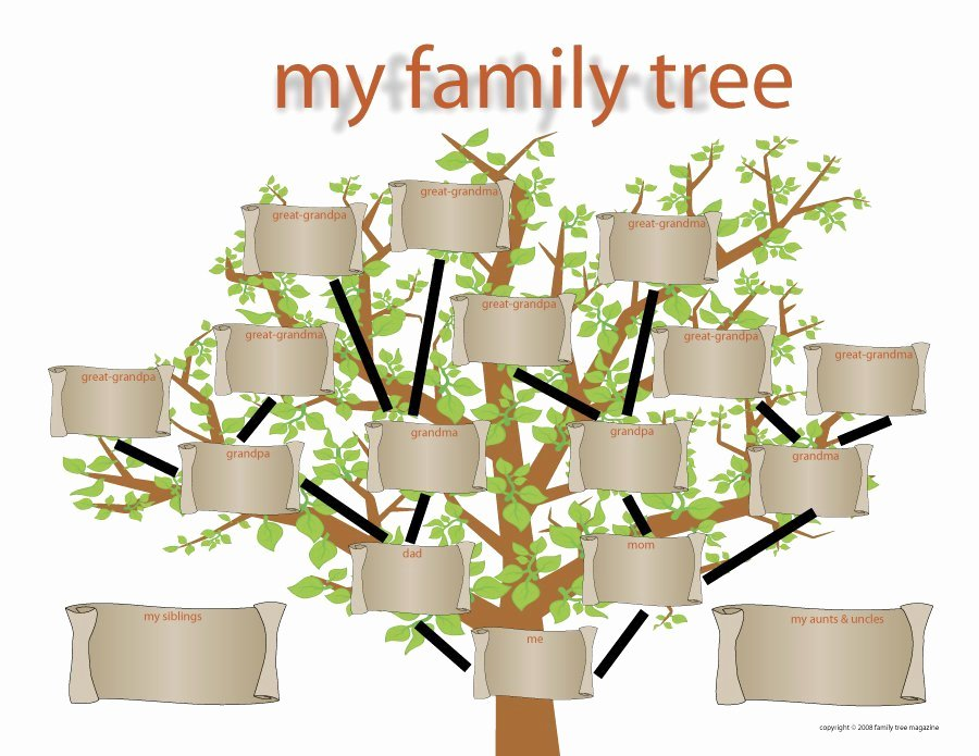 Tree Template for Family Tree Fresh 40 Free Family Tree Templates Word Excel Pdf