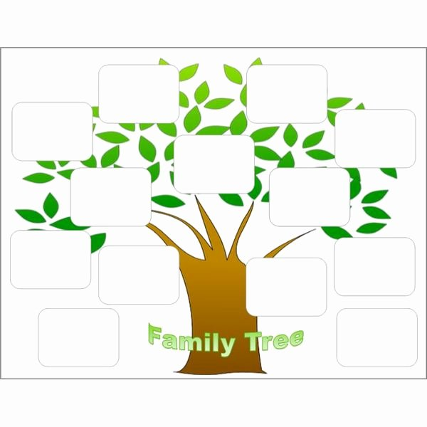Tree Template for Family Tree Inspirational Create A Family Tree with the Help Of these Free Templates