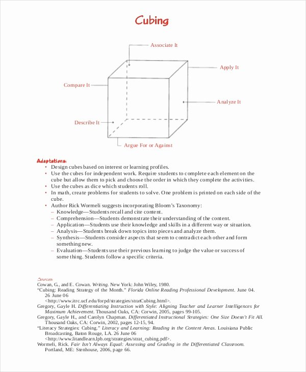 Udl Lesson Plan Template Best Of Differentiated Instruction Template 7 Free Word Pdf