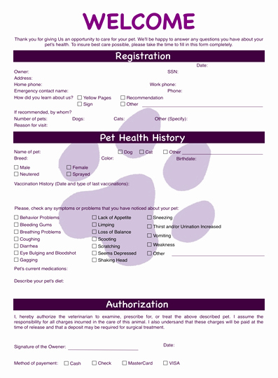 Veterinary Medical Records Templates Unique Veterinary form
