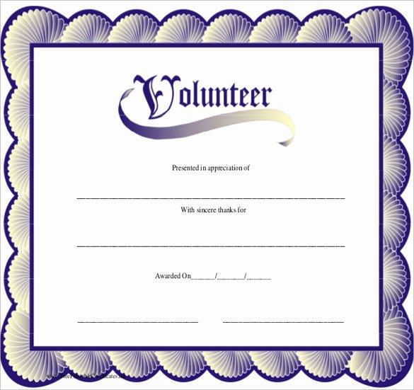 Volunteer Certificate Of Appreciation Templates Awesome Sample Volunteer Certificate Template 13 Documents In
