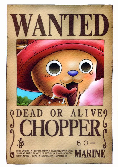 Wanted Poster One Piece Beautiful Crunchyroll Library E Piece Wanted Posters