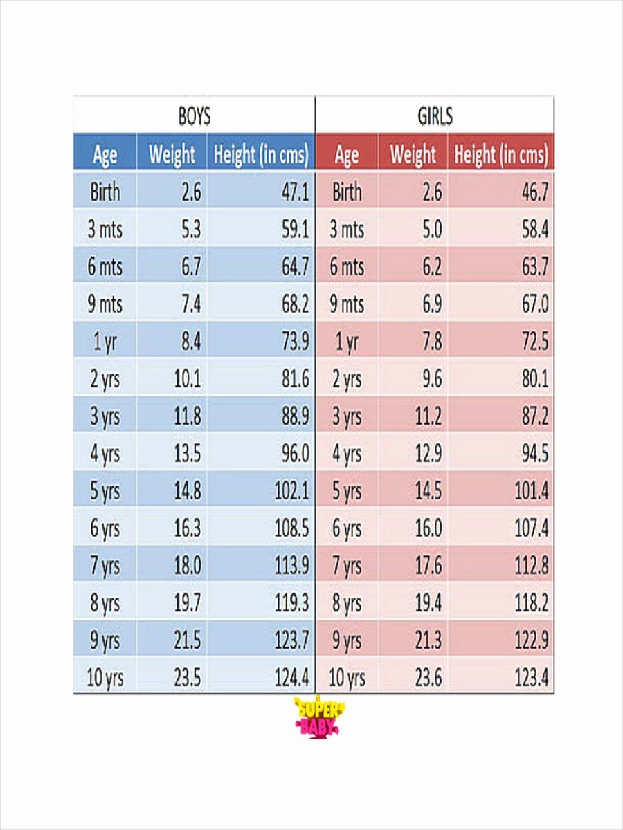 Weight Height Age Charts Best Of Free 7 Height and Weight Chart Examples & Samples In Pdf