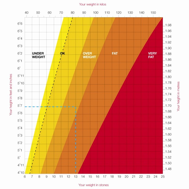 Weight Height Age Charts Fresh How Much You Should Weight for Height and Age