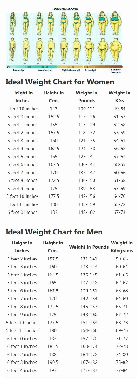 Weight to Heigh Ratio Unique 1000 Ideas About Height Weight Charts On Pinterest