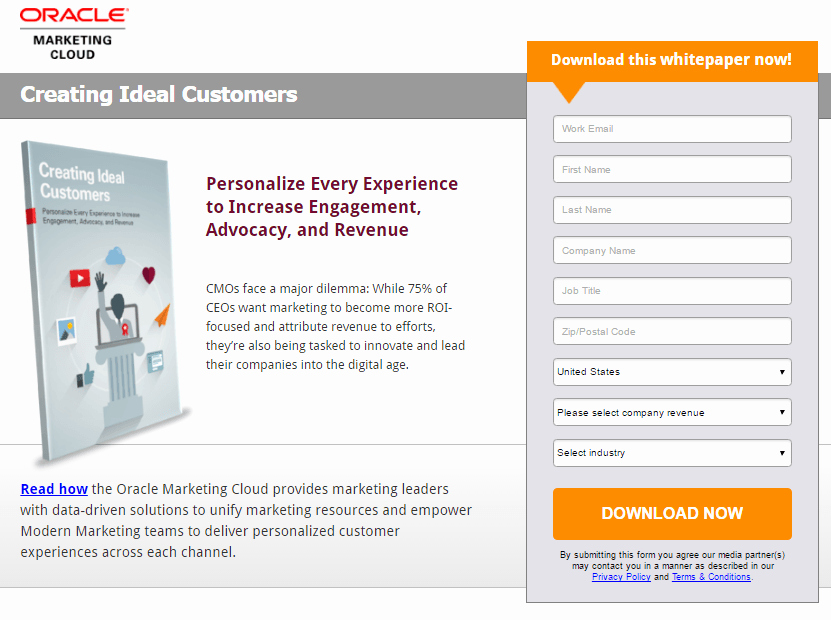 White Paper Examples Unique 20 White Paper Landing Page Examples Critiqued