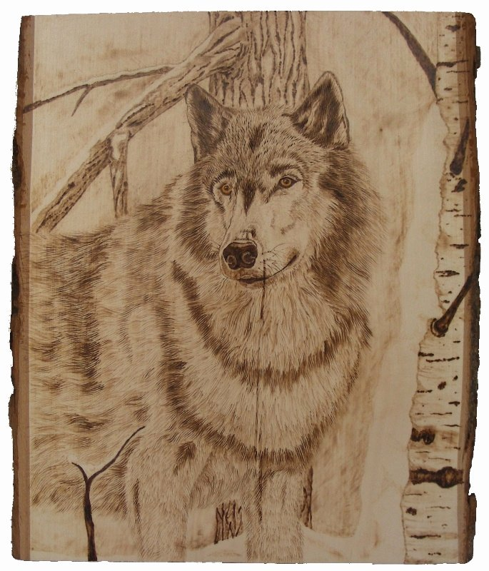 Wood Burning Art Patterns Beautiful 149 Best Burn Baby Burn Images On Pinterest