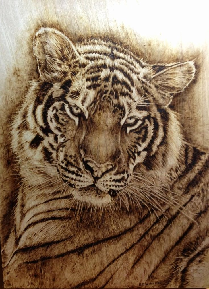 Wood Burning Art Patterns Best Of 1424 Best Woodburning Images On Pinterest