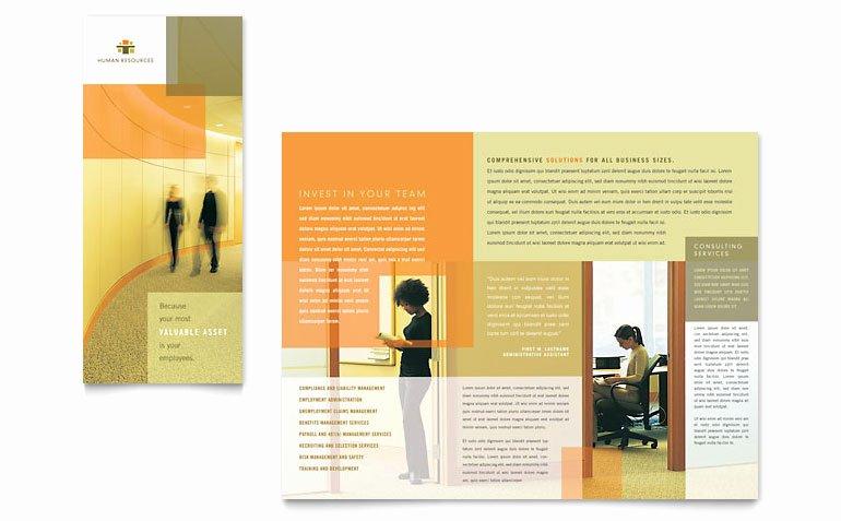 Word Brochure Template Tri Fold Lovely Hr Consulting Tri Fold Brochure Template Word & Publisher