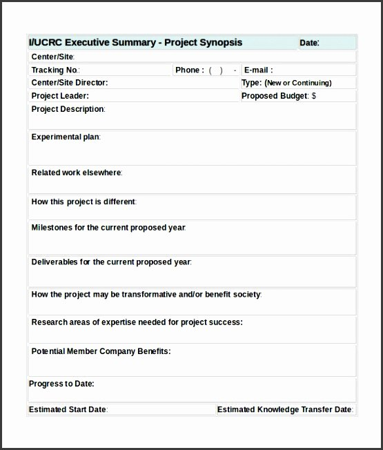 Word Executive Summary Template Awesome 8 Project Summary Template Word Sampletemplatess