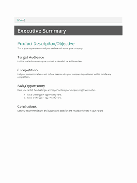 Word Executive Summary Template Fresh 43 Free Executive Summary Templates In Word Excel Pdf