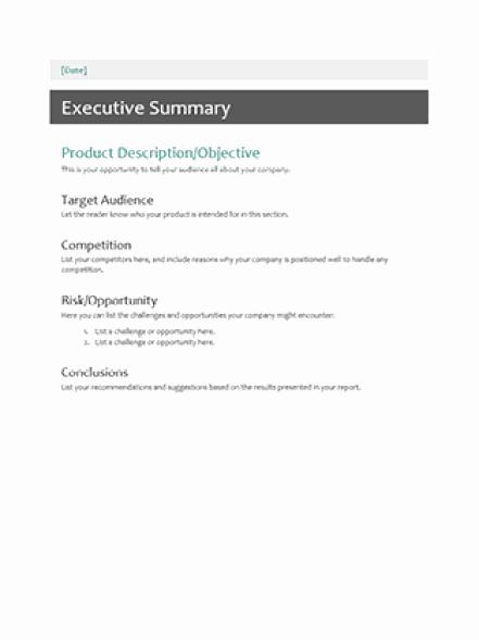 Word Executive Summary Template Fresh 43 Free Executive Summary Templates In Word Excel Pdf