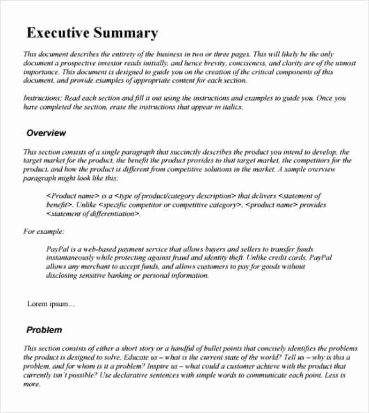 Word Executive Summary Template Luxury 43 Free Executive Summary Templates In Word Excel Pdf