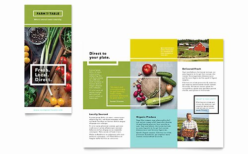 Word Tri Fold Templates Beautiful Free Tri Fold Brochure Template Word Publisher Microsoft