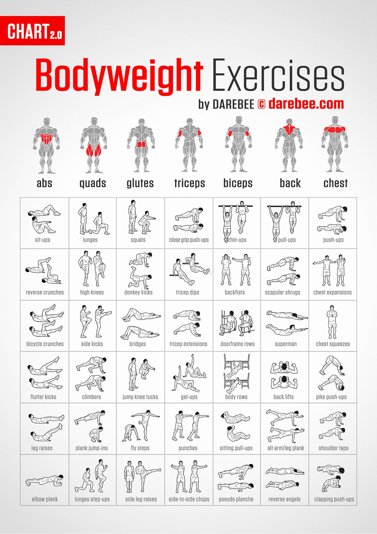 Work Out Chart Awesome Work Every Muscle with This Bodyweight Exercise Chart