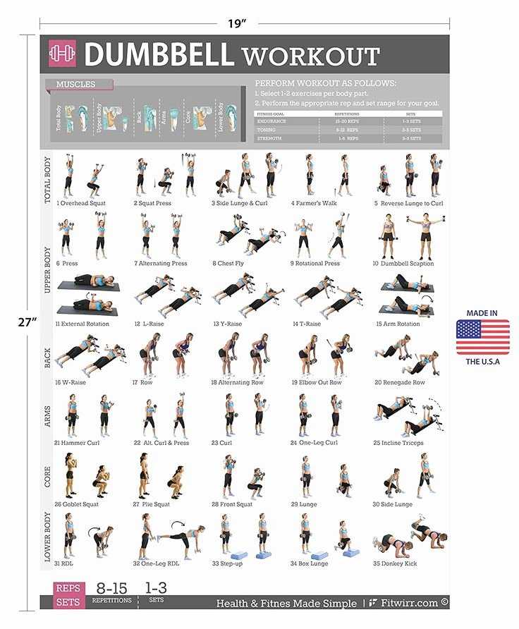 Work Out Chart Fresh Dumbbell Exercises Workout Poster now Laminated
