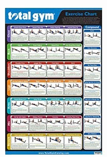 Work Out Chart New Exercise Chart Features 35 total Gym Exercises Workout Gym