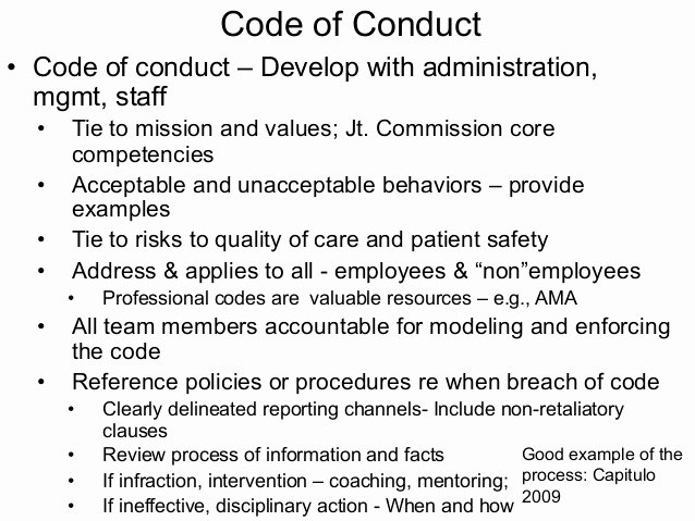 Workplace Code Of Conduct Template Luxury Bullying In the Workplace by Loraleigh Keashly