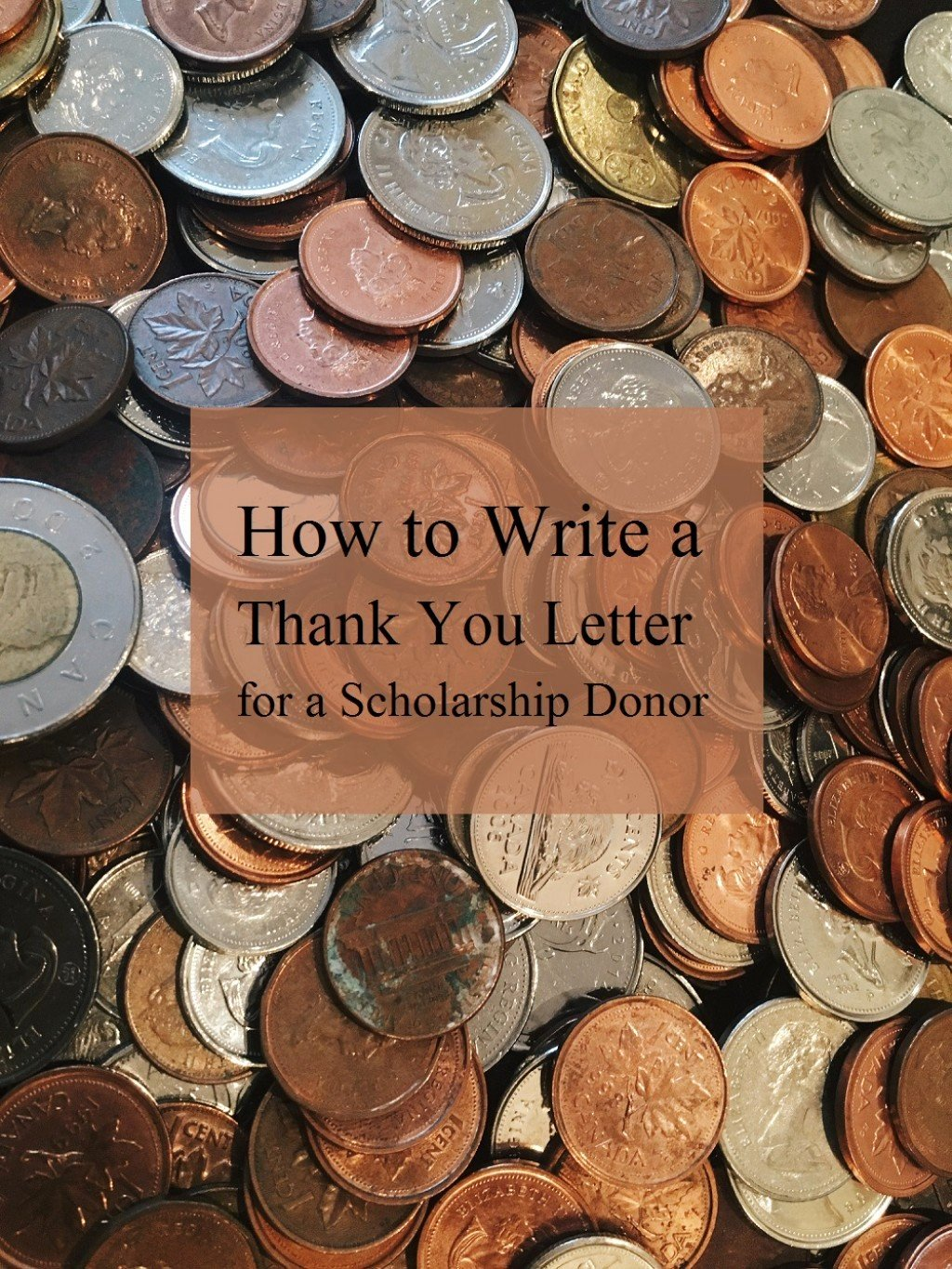 Write A Thank You Letter Lovely How to Write A Thank You Letter for A Scholarship Donor